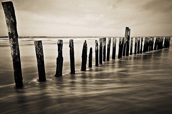 Wooden Poles - Landscape by Leon Ritchie