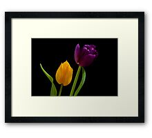 Two Colours Framed Print