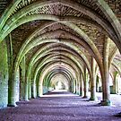 Fountains Abbey - Cellarium by Trevor Kersley