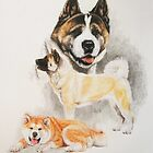 Akita by BarbBarcikKeith