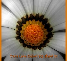 The Colors Of My Heart ~ Part Two by artisandelimage