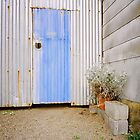 Blue Tin Door Garden by cratermoon