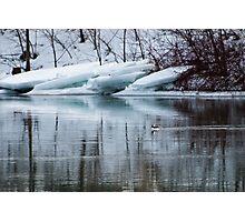 Bufflehead Duck and Ice Formation, Niagara River, Ontario Photographic Print