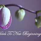 Here's To New Beginnings by AuntDot