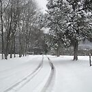 country snow by Loretta Marvin