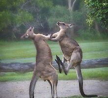 Kick Boxing by BoB Davis