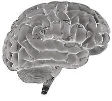 Brain by Nasko .