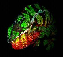 Panther Chameleon by Robbie Labanowski