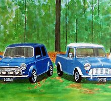 MIni Coopers by Yvonne Carter