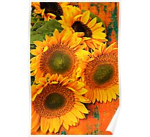 A Bunch Of Sunflowers Poster