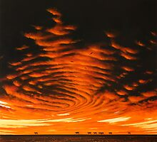 Arid Zone by John  Murray