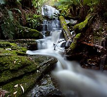 Myrtle Gully Falls # 2 by lee Henley
