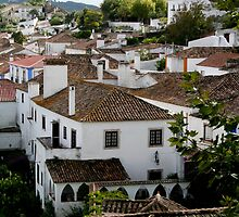 Rooftops - Obidos by Marilyn Harris