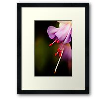 Dream of purple softness Framed Print