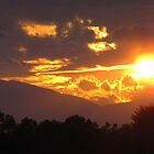 Mountain Sunset by Jean Gregory  Evans