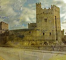 Cahir Castle, Co . Tipperary. by Martina Fagan