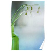Fresh Spring Poster