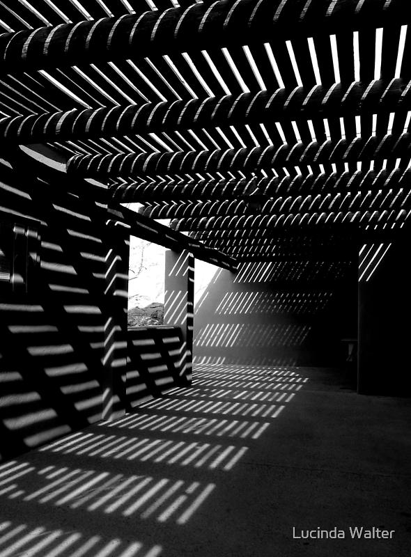 Light & Shadows ~ Black & White by Lucinda Walter