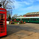 Tenterden Station  by larry flewers