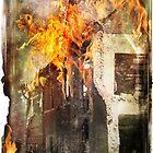 Taken by Fire by AlexKujawa