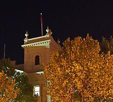 Melbourne Night Sky by TazzieTan