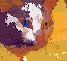 Odd-eyed calico by ♥⊱ B. Randi Bailey