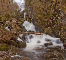 Lodore Falls by Rich Gale