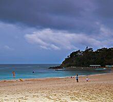 Bleak Beach Outlook by bazcelt