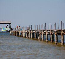Pine Island Pier by phil decocco