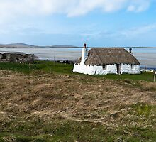 Thatched cottage by Hugh McKean