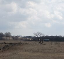 Norwood Countryside by Tracy Faught