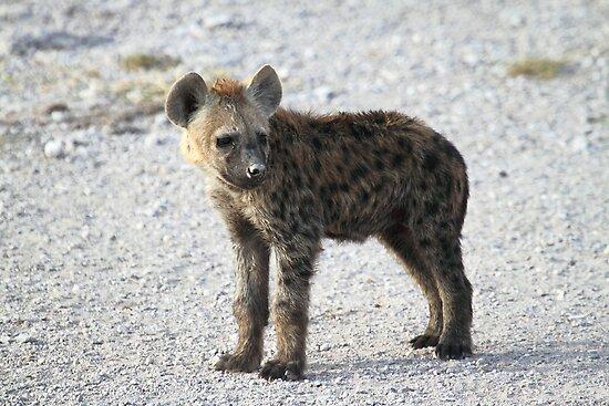 Laughing Hyenas - Laughing Hyenas