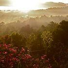 Glorious Sunrise - Seaford Town, Jamaica by Allie Ludvigson