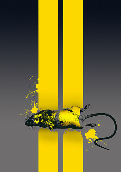 Roadkill poster by Naf4d