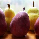Pears by TerrillWelch