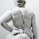 snowy... by lukasdf