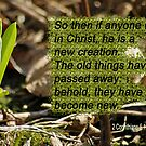 New Creation - made new 2 Cor 5:17 by Robin Clifton