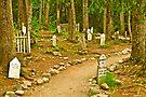 Gold Rush Cemetery by Yukondick