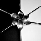 Spoons on Black & White - Still Life by Victoria limerick