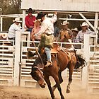 Rodeo Cowboy Riding a Wild Horse by Buckwhite