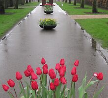 A Rainy Day in the Keukenhof Gardens by Patricia127