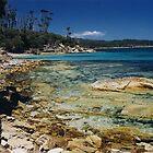 Maria Island Coastline, Tasmania by Jane McDougall