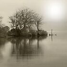 Tranquility by SuddenJim