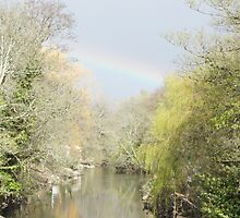 the rainbow by shani27