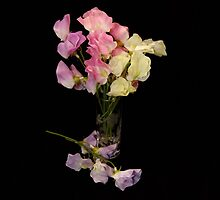 Sweet Pea Still Life by AnnDixon