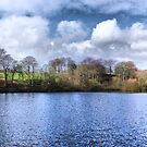 Chellow Dene ~ Panoramic HDR ~ by Sandra Cockayne