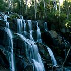 Toorongo Falls by cherryw