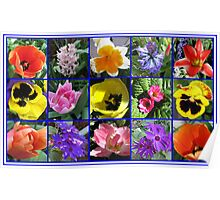 Flowers of Spring Collage Poster