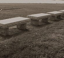 Granite Memorial Benches by Margie Avellino