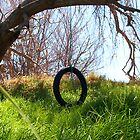 The KIds' Tyre Swing by robertemerald